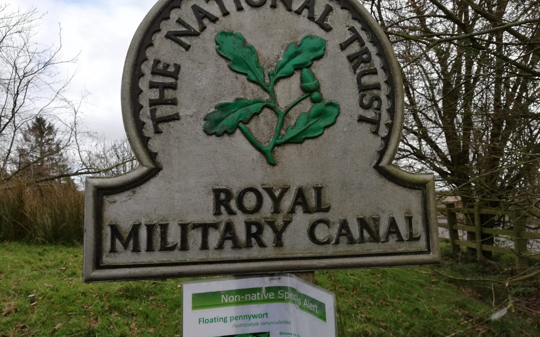 Walk all Over Cancer – Royal Military Canal