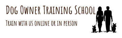 Dog Owner Training School